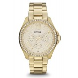 Fossil Cecile Women's Gold Stainless Steel Strap Watch AM4482
