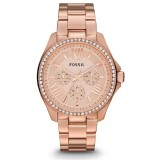 Fossil Women's Cecile Rose Tone Multifunction Stainless Steel Strap Watch AM4483