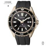 (100% Original) Citizen BN0193-17E Promaster Eco-Drive Professional Diver's Paled Gold Tone Watch