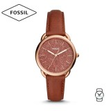 Fossil Women ES4420 Tailor Three-Hand Terracotta Leather Watch (Brown)