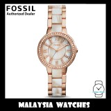 (OFFICIAL WARRANTY) Fossil ES3716 Virginia Rose-Tone & Horn Acetate Stainless Steel Watch