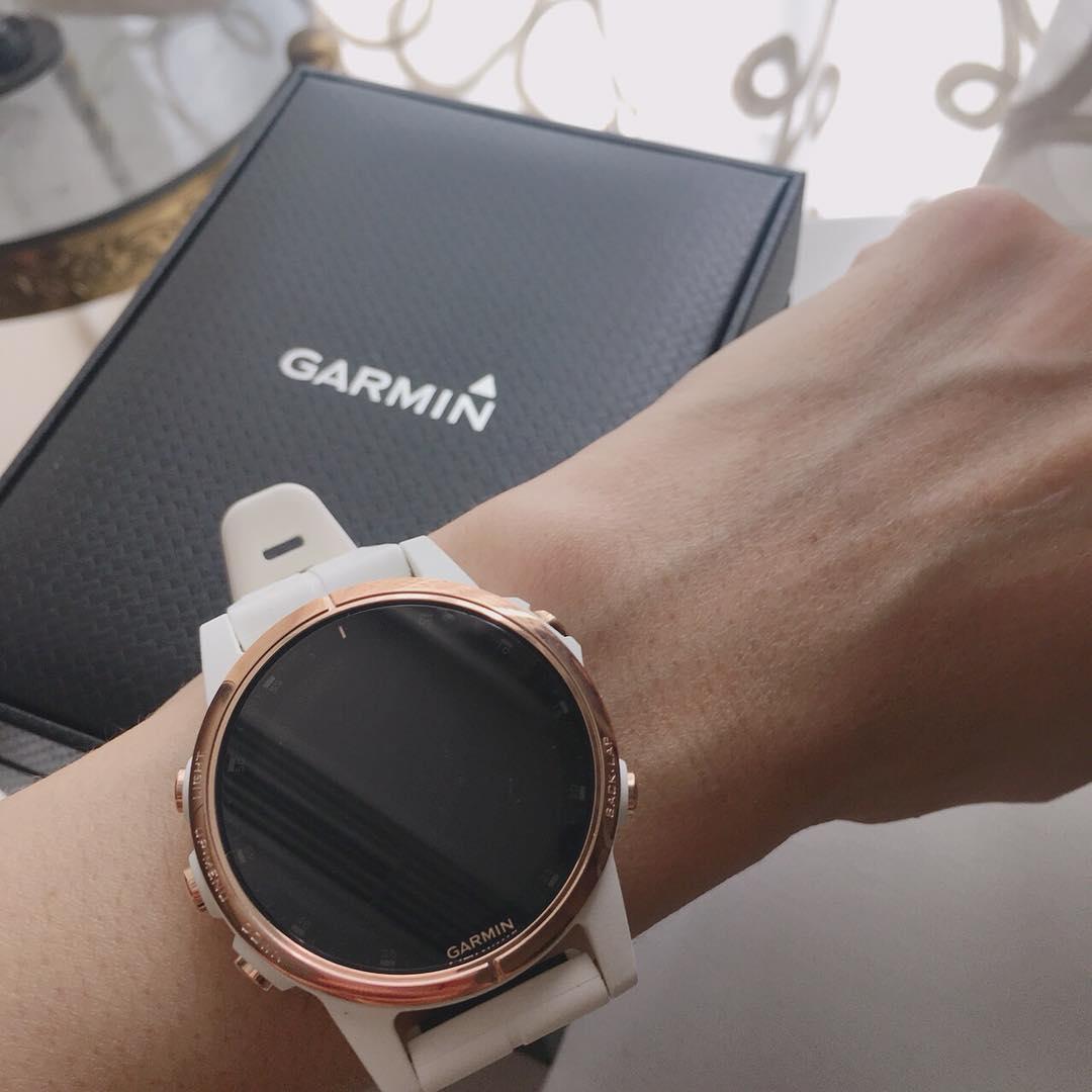 OFFICIAL WARRANTY) Garmin Fenix 5S Plus Sapphire Rose Gold
